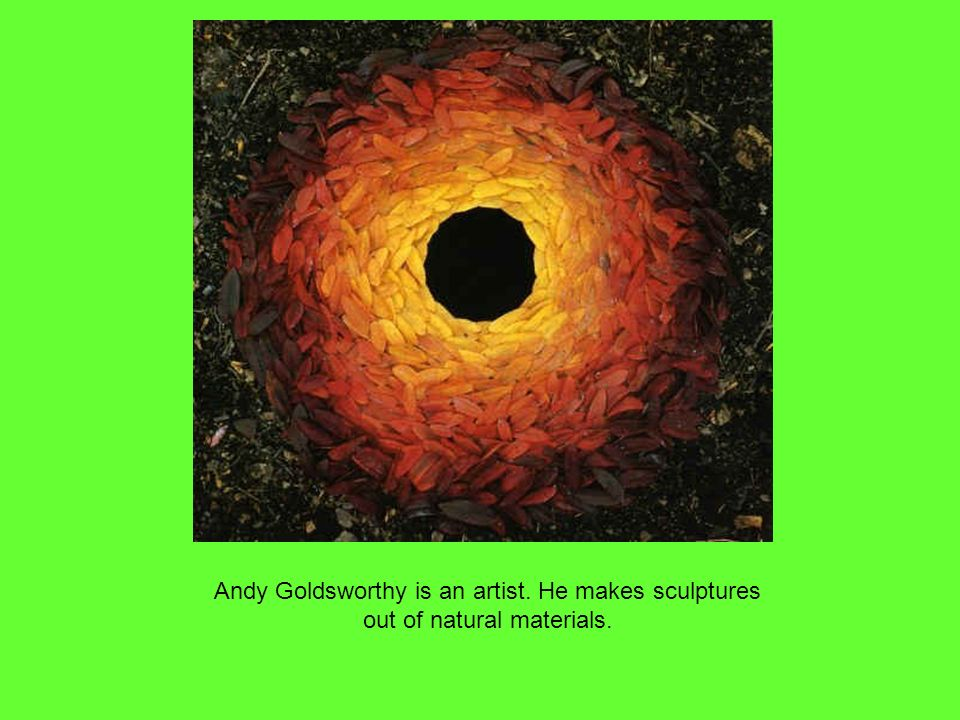 Andy Goldsworthy is an artist. He makes sculptures out of natural materials.