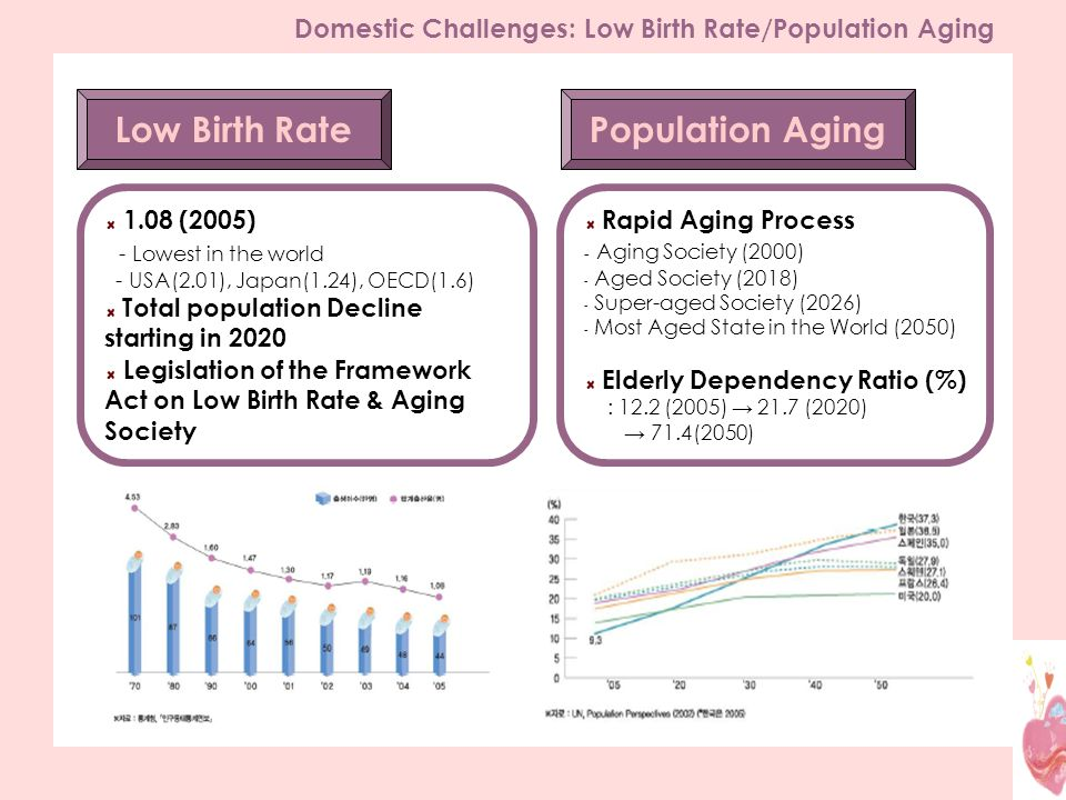 Low Birth Rate 1.08 (2005) - Lowest in the world - USA(2.01), Japan(1.24), OECD(1.6) Total population Decline starting in 2020 Legislation of the Framework Act on Low Birth Rate & Aging Society Population Aging Rapid Aging Process - Aging Society (2000) - Aged Society (2018) - Super-aged Society (2026) - Most Aged State in the World (2050) Elderly Dependency Ratio (%) : 12.2 (2005) 21.7 (2020) 71.4(2050) Domestic Challenges: Low Birth Rate/Population Aging