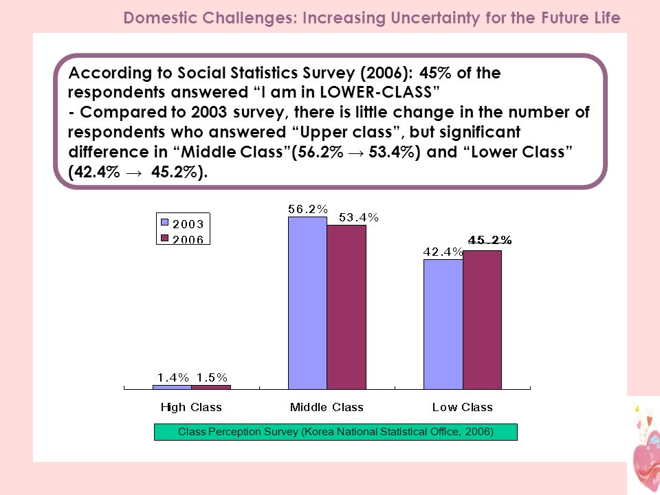 According to Social Statistics Survey (2006): 45% of the respondents answered I am in LOWER-CLASS - Compared to 2003 survey, there is little change in the number of respondents who answered Upper class, but significant difference in Middle Class(56.2% 53.4%) and Lower Class (42.4% 45.2%).