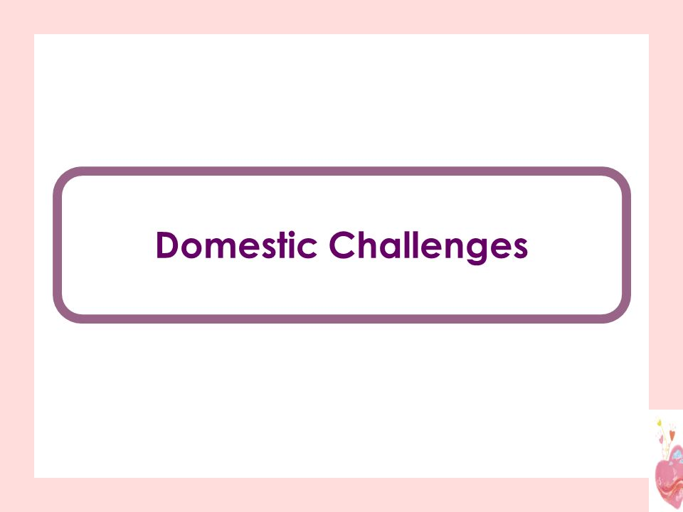 Domestic Challenges