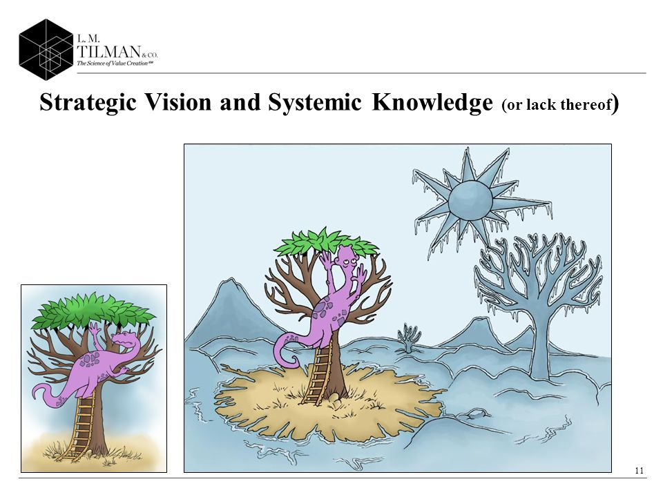 11 Strategic Vision and Systemic Knowledge (or lack thereof )