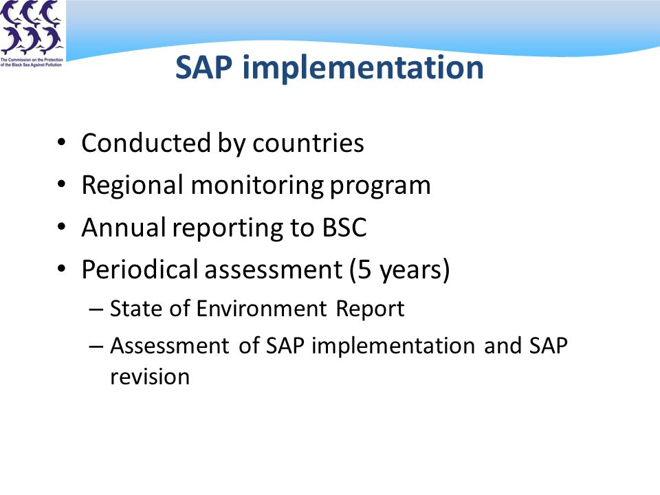 SAP implementation Conducted by countries Regional monitoring program Annual reporting to BSC Periodical assessment (5 years) – State of Environment Report – Assessment of SAP implementation and SAP revision