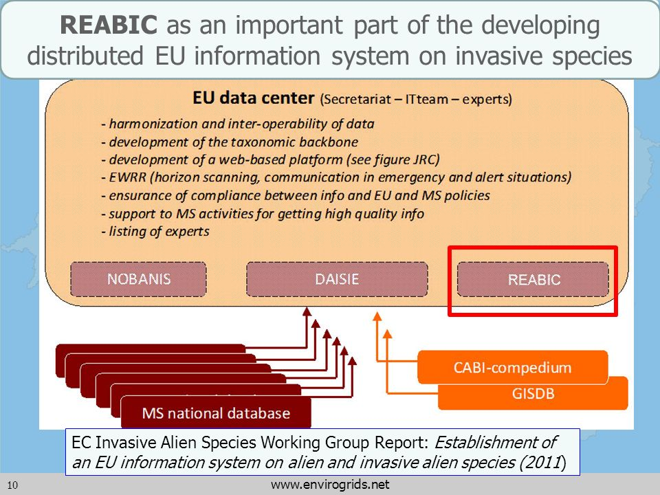 10 www.envirogrids.net REABIC as an important part of the developing distributed EU information system on invasive species EC Invasive Alien Species W