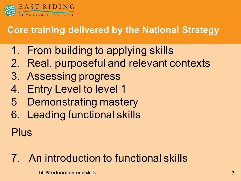 8 The four core modules for schools Autumn term 2008 Teaching functional skills: From building to applying skills Within real, purposeful and relevant contexts Teaching functional skills: Assessing progress From Entry level to Level 1 Spring term 2009
