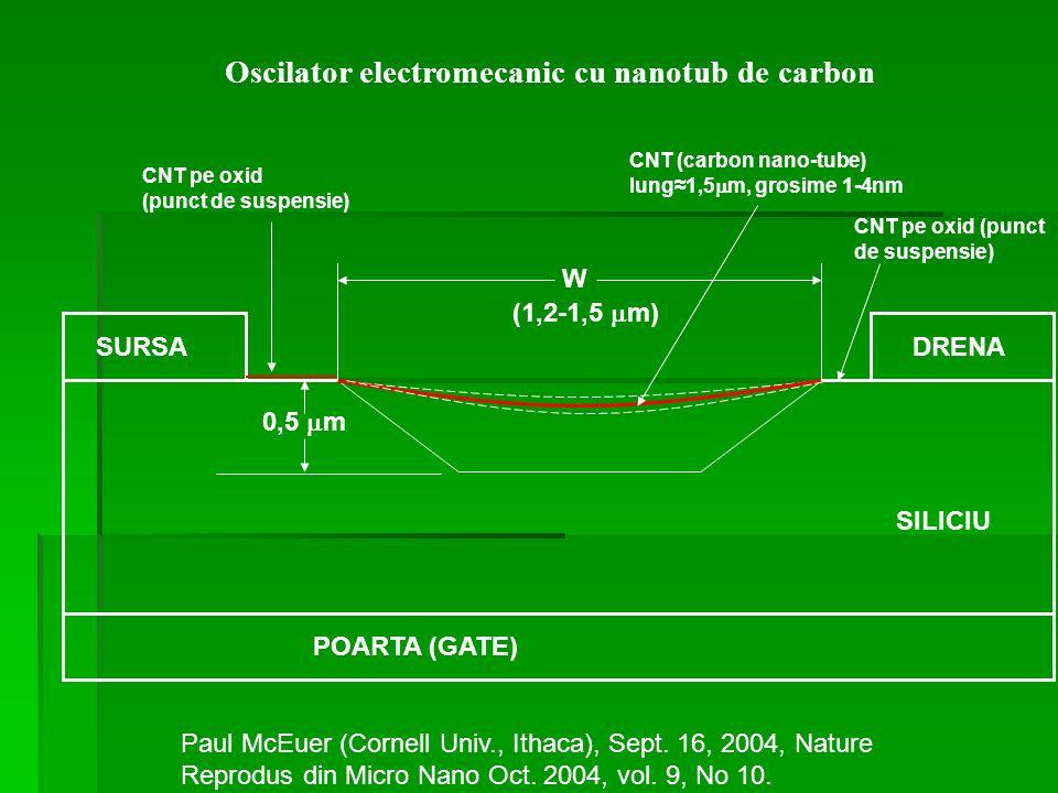 SURSADRENA SILICIU POARTA (GATE) 0,5 m (1,2-1,5 m) W CNT pe oxid (punct de suspensie) CNT (carbon nano-tube) lung1,5 m, grosime 1-4nm CNT pe oxid (pun