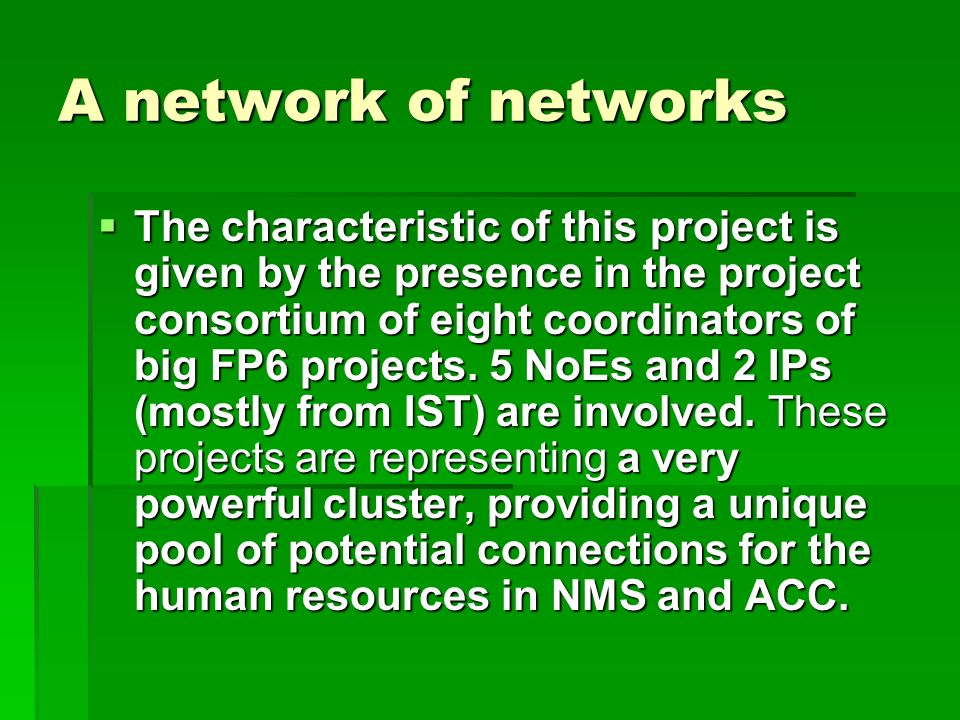 A network of networks The characteristic of this project is given by the presence in the project consortium of eight coordinators of big FP6 projects.