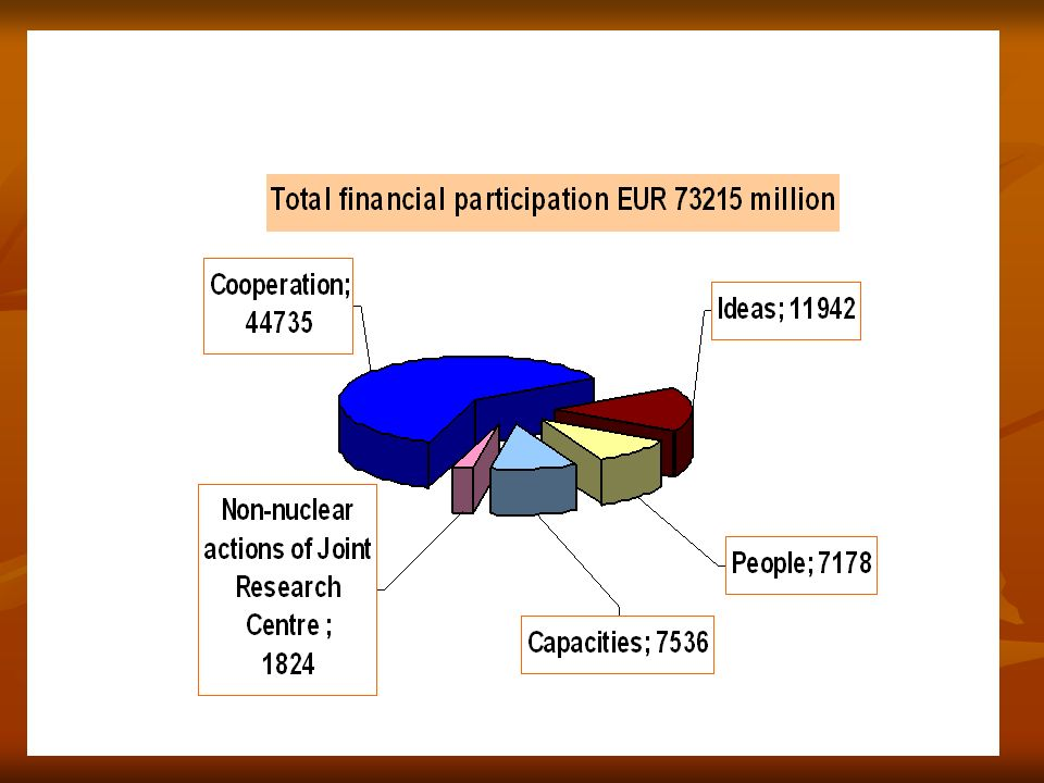 D.Dascalu: NanoWorkshop, CCIRB, 12 April 2005 Instruments/funding schemes (1) 1.
