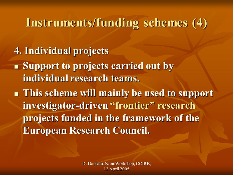 D. Dascalu: NanoWorkshop, CCIRB, 12 April 2005 Instruments/funding schemes (4) 4.