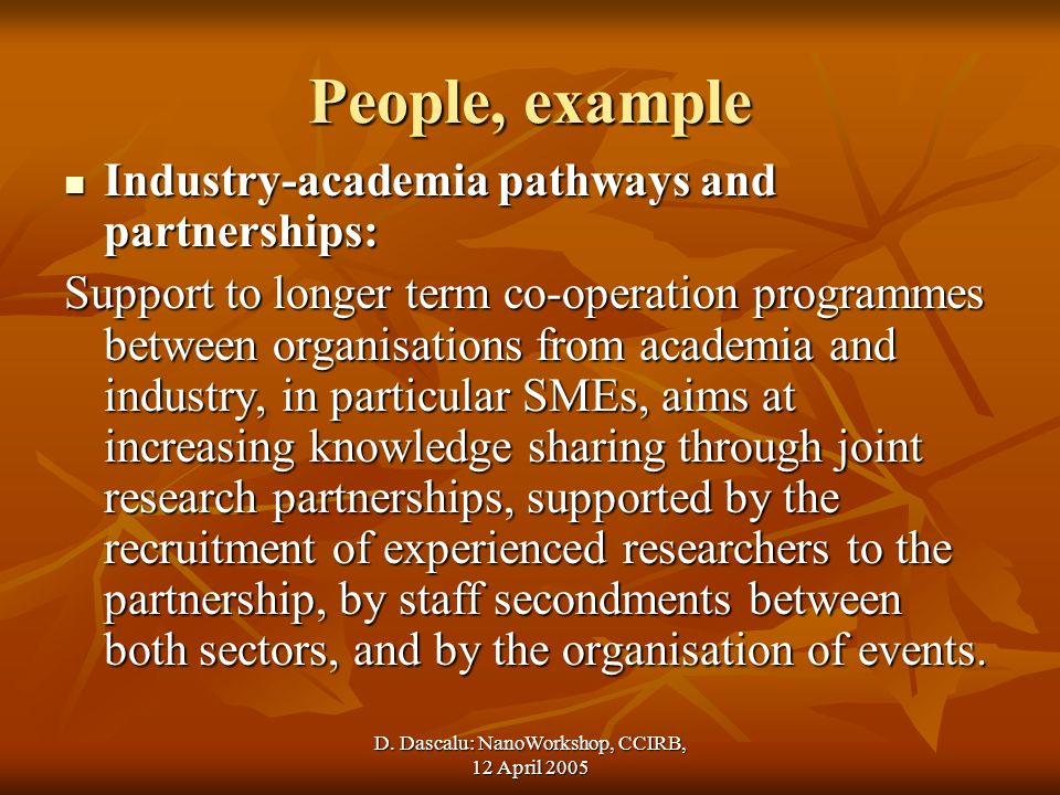D. Dascalu: NanoWorkshop, CCIRB, 12 April 2005 People, example Industry-academia pathways and partnerships: Industry-academia pathways and partnership