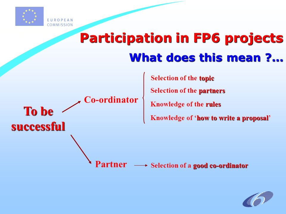 Participation in FP6 projects What does this mean ...