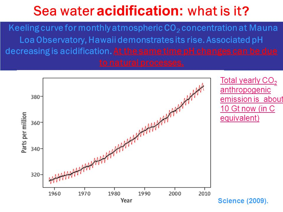 Sea water acidification: what is it .