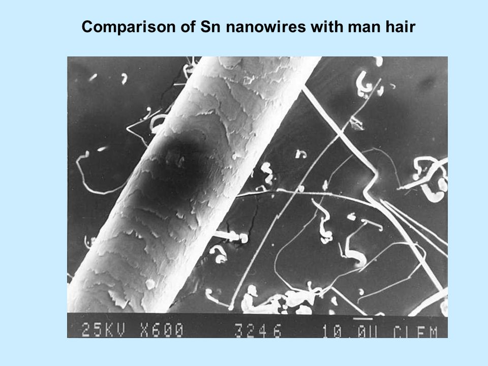 Comparison of Sn nanowires with man hair