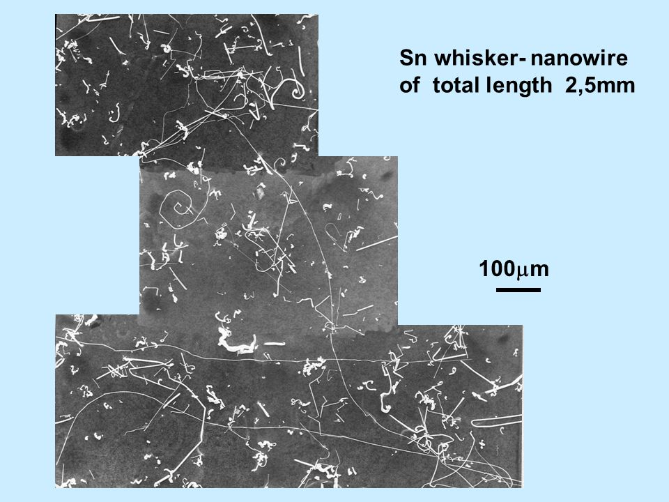100 m Sn whisker- nanowire of total length 2,5mm