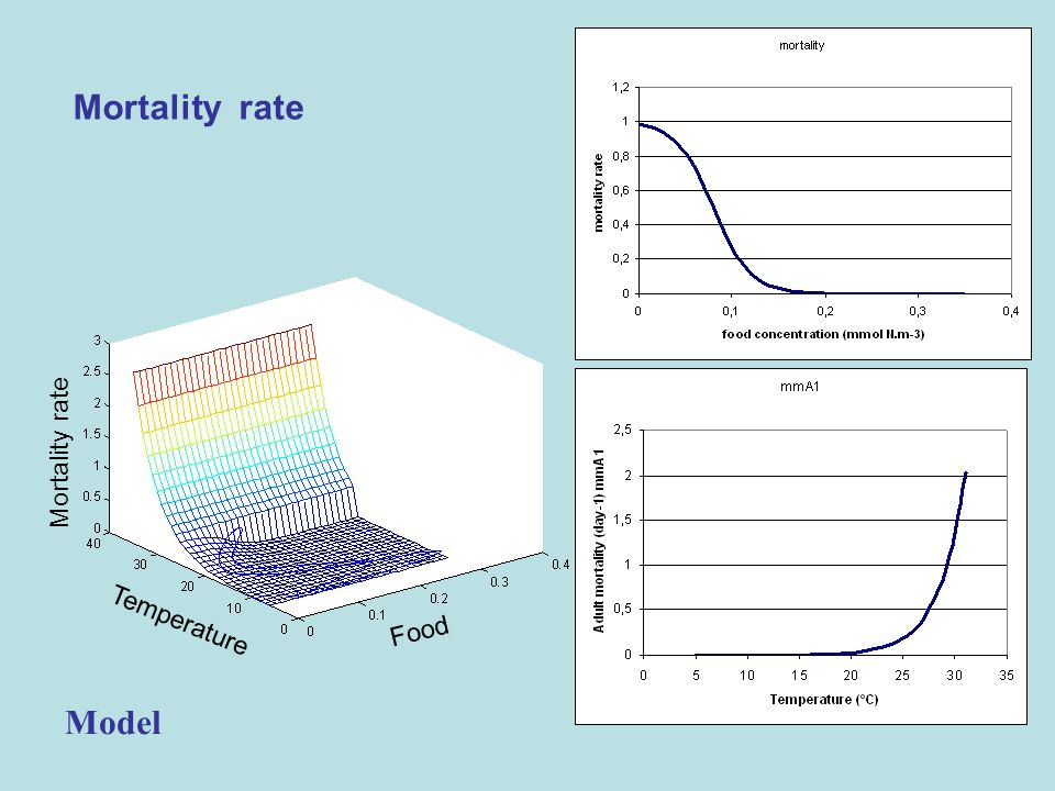 Mortality rate Food Temperature Mortality rate Model