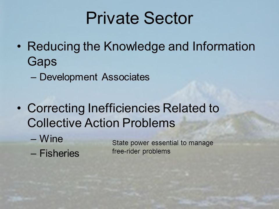 Private Sector Reducing the Knowledge and Information Gaps –Development Associates Correcting Inefficiencies Related to Collective Action Problems –Wine –Fisheries State power essential to manage free-rider problems