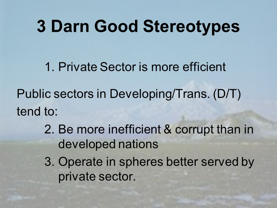 3 Darn Good Stereotypes 1.Private Sector is more efficient Public sectors in Developing/Trans.