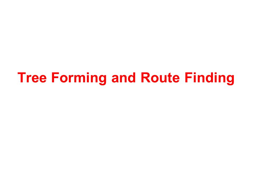 Tree Forming and Route Finding