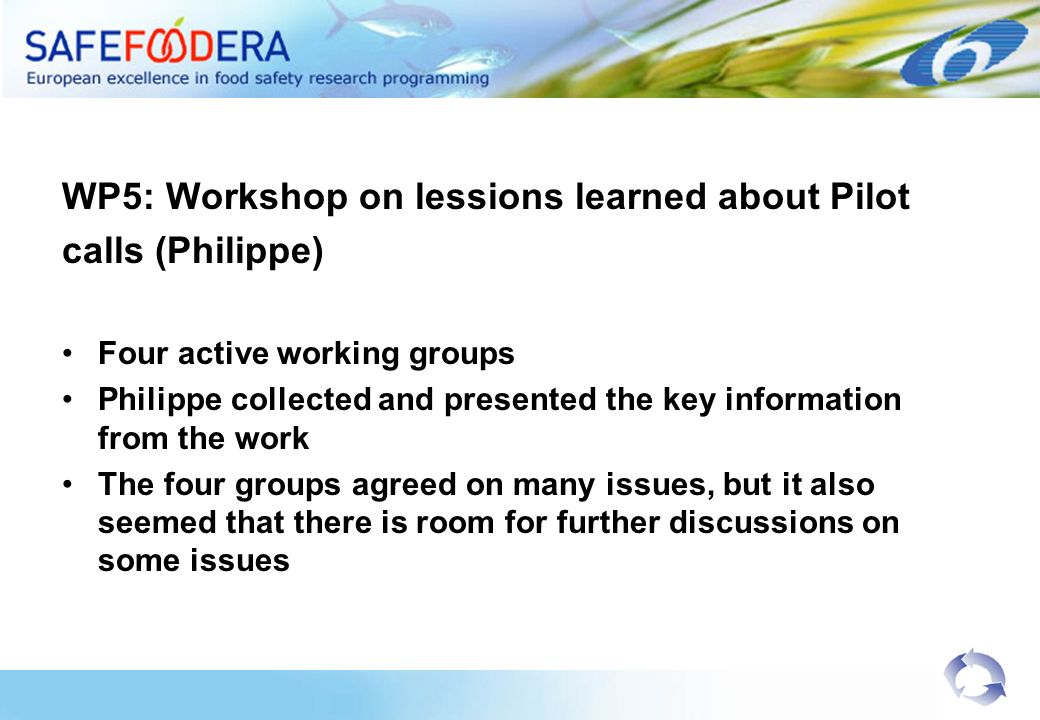 WP5: Workshop on lessions learned about Pilot calls (Philippe) Four active working groups Philippe collected and presented the key information from the work The four groups agreed on many issues, but it also seemed that there is room for further discussions on some issues