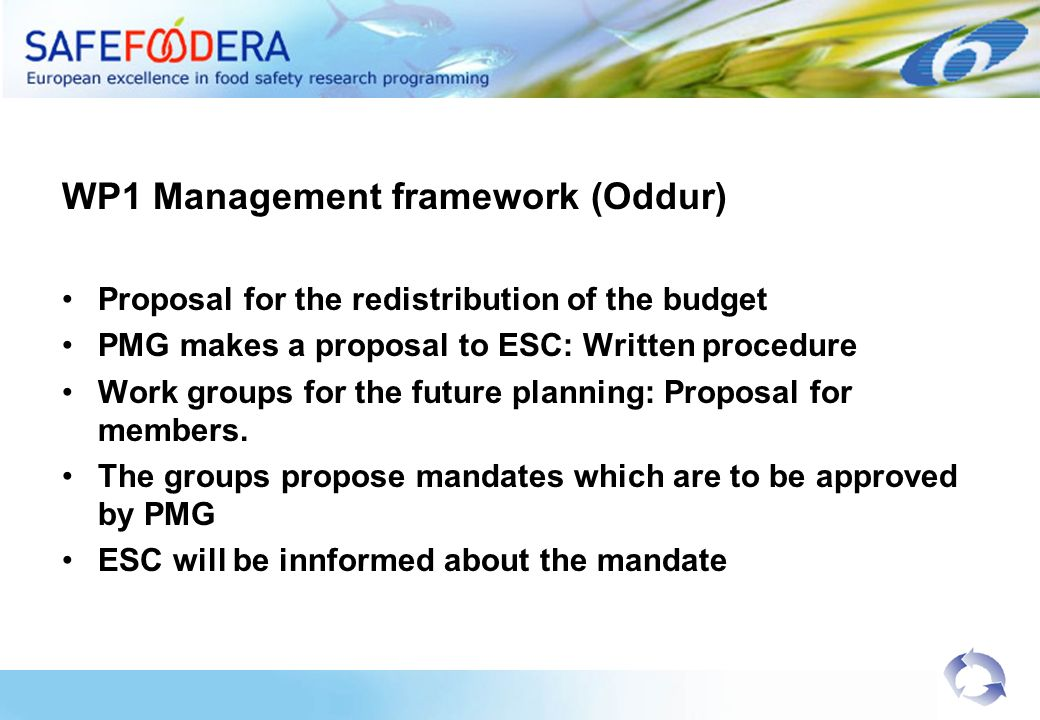 WP1 Management framework (Oddur) Proposal for the redistribution of the budget PMG makes a proposal to ESC: Written procedure Work groups for the futu
