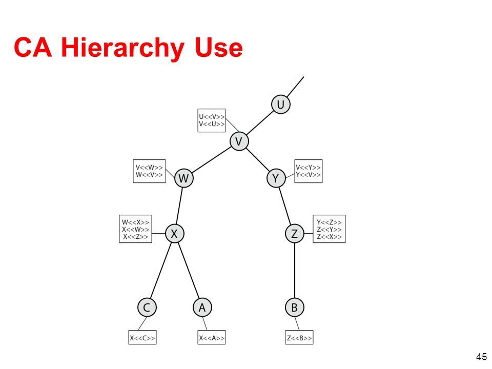 45 CA Hierarchy Use