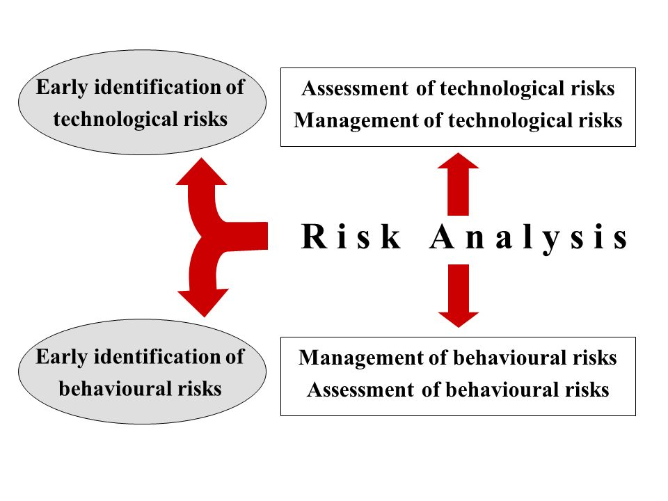 R i s k A n a l y s i s Assessment of technological risks Management of technological risks Management of behavioural risks Assessment of behavioural risks Early identification of technological risks Early identification of behavioural risks