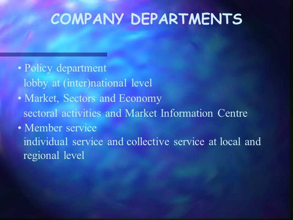 COMPANY DEPARTMENTS Policy department lobby at (inter)national level Market, Sectors and Economy sectoral activities and Market Information Centre Member service individual service and collective service at local and regional level