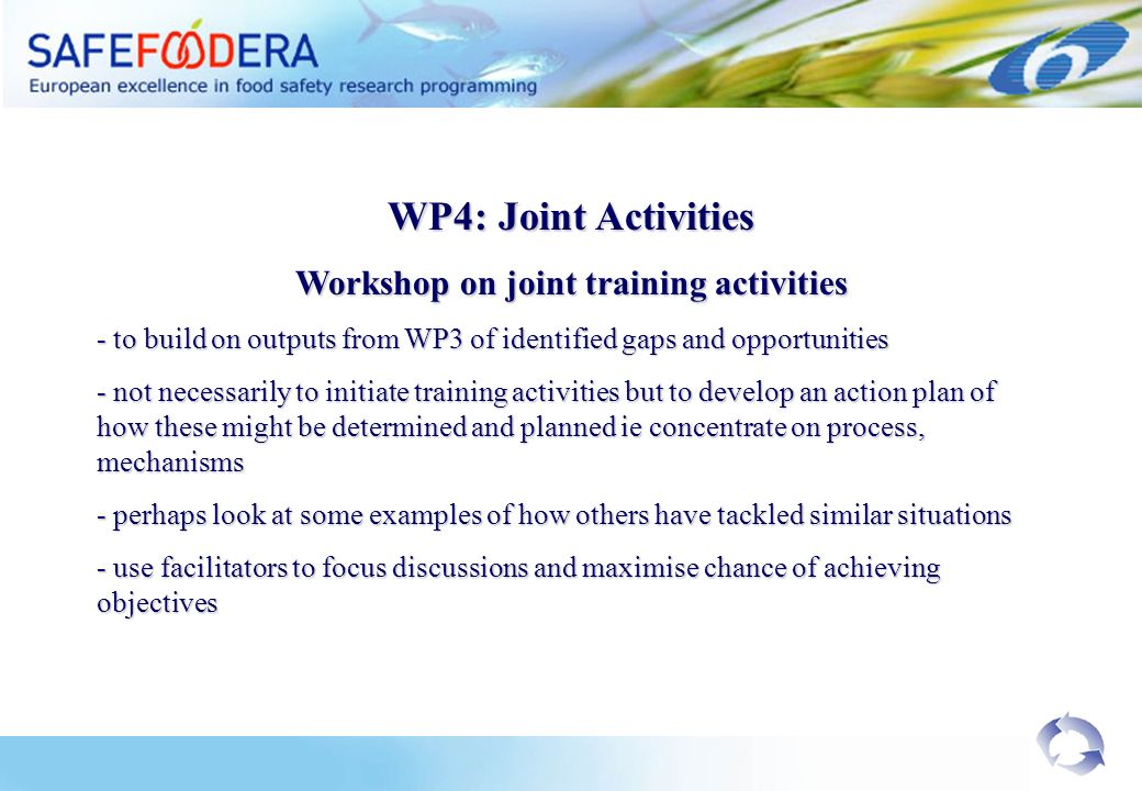 WP4: Joint Activities Workshop on joint training activities - to build on outputs from WP3 of identified gaps and opportunities - not necessarily to initiate training activities but to develop an action plan of how these might be determined and planned ie concentrate on process, mechanisms - perhaps look at some examples of how others have tackled similar situations - use facilitators to focus discussions and maximise chance of achieving objectives