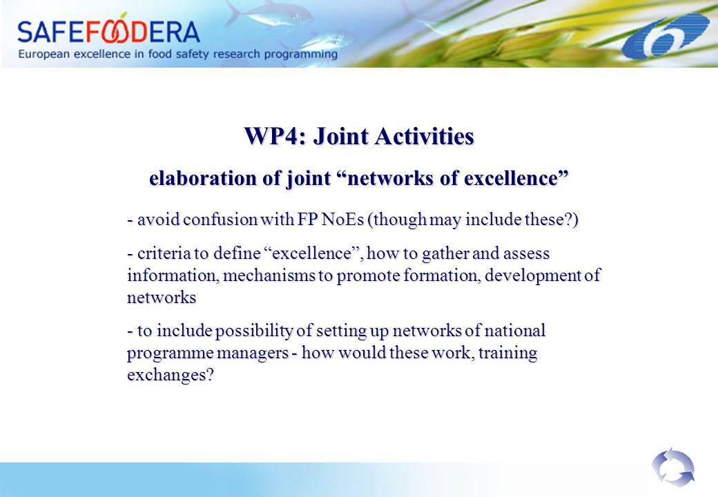 WP4: Joint Activities elaboration of joint networks of excellence - avoid confusion with FP NoEs (though may include these ) - criteria to define excellence, how to gather and assess information, mechanisms to promote formation, development of networks - to include possibility of setting up networks of national programme managers - how would these work, training exchanges