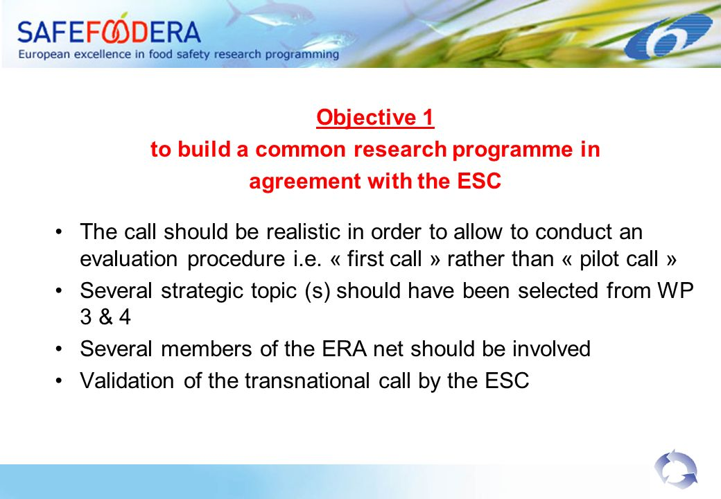 Objective 1 to build a common research programme in agreement with the ESC The call should be realistic in order to allow to conduct an evaluation procedure i.e.