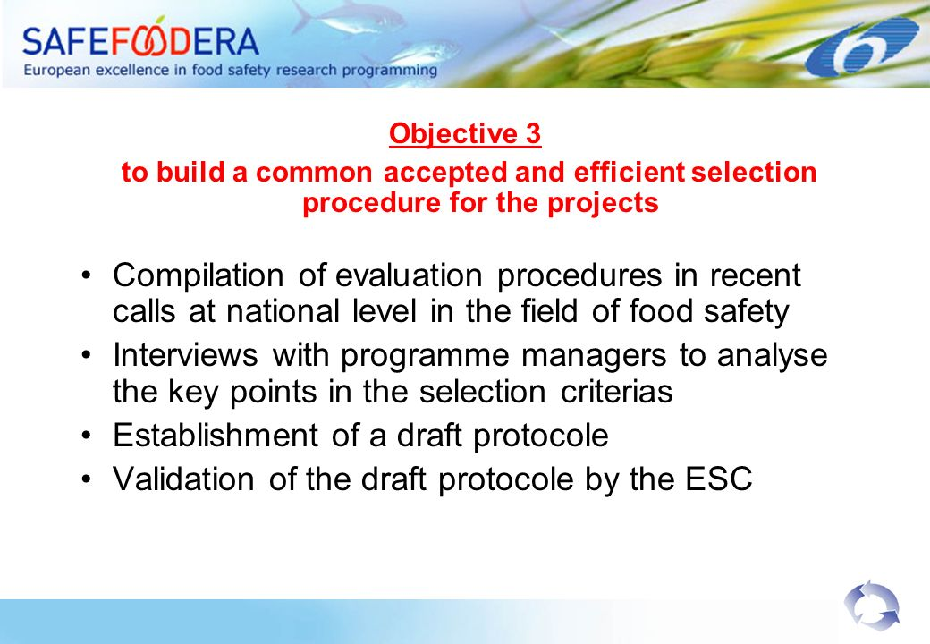 Objective 3 to build a common accepted and efficient selection procedure for the projects Compilation of evaluation procedures in recent calls at national level in the field of food safety Interviews with programme managers to analyse the key points in the selection criterias Establishment of a draft protocole Validation of the draft protocole by the ESC