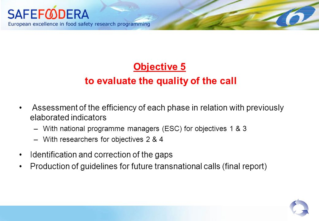 Objective 5 to evaluate the quality of the call Assessment of the efficiency of each phase in relation with previously elaborated indicators –With nat