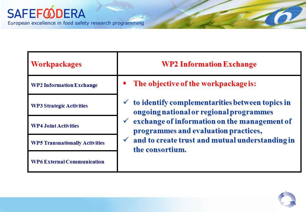 Workpackages WP2 Information Exchange WP3 Strategic Activities WP4 Joint Activities WP5 Transnationally Activities The objective of the workpackage is