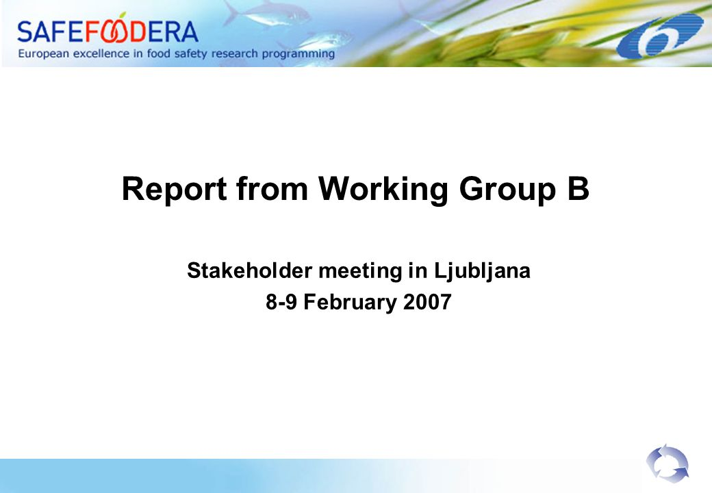 Report from Working Group B Stakeholder meeting in Ljubljana 8-9 February 2007