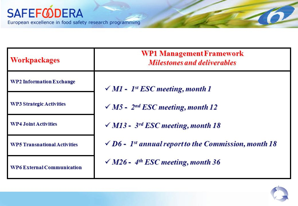 Workpackages WP2 Information Exchange WP1 Management Framework Milestones and deliverables WP3 Strategic Activities WP6 External Communication M1 - 1 st ESC meeting, month 1 M1 - 1 st ESC meeting, month 1 M5 - 2 nd ESC meeting, month 12 M5 - 2 nd ESC meeting, month 12 M rd ESC meeting, month 18 M rd ESC meeting, month 18 D6 - 1 st annual report to the Commission, month 18 D6 - 1 st annual report to the Commission, month 18 M th ESC meeting, month 36 M th ESC meeting, month 36 WP4 Joint Activities WP5 Transnational Activities