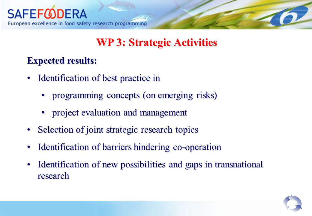 WP 3: Strategic Activities Expected results: Identification of best practice inIdentification of best practice in programming concepts (on emerging risks)programming concepts (on emerging risks) project evaluation and managementproject evaluation and management Selection of joint strategic research topicsSelection of joint strategic research topics Identification of barriers hindering co-operationIdentification of barriers hindering co-operation Identification of new possibilities and gaps in transnational researchIdentification of new possibilities and gaps in transnational research