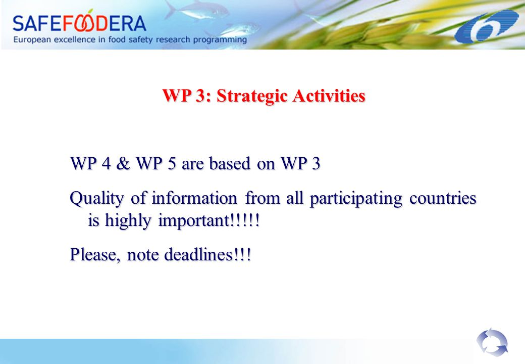 WP 3: Strategic Activities WP 4 & WP 5 are based on WP 3 Quality of information from all participating countries is highly important!!!!.