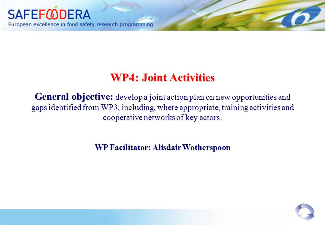 WP4: Joint Activities General objective: develop a joint action plan on new opportunities and gaps identified from WP3, including, where appropriate, training activities and cooperative networks of key actors.