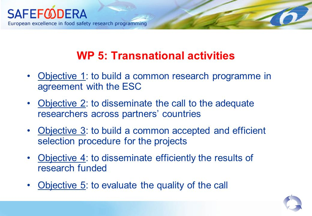 WP 5: Transnational activities Objective 1: to build a common research programme in agreement with the ESC Objective 2: to disseminate the call to the adequate researchers across partners countries Objective 3: to build a common accepted and efficient selection procedure for the projects Objective 4: to disseminate efficiently the results of research funded Objective 5: to evaluate the quality of the call