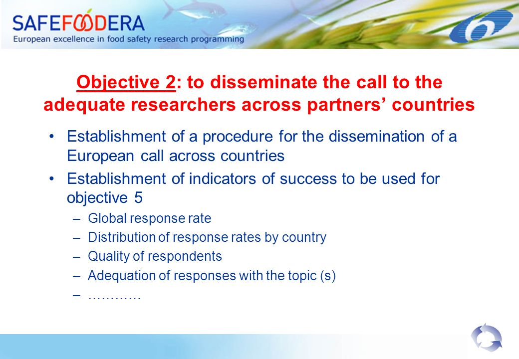 Objective 2: to disseminate the call to the adequate researchers across partners countries Establishment of a procedure for the dissemination of a European call across countries Establishment of indicators of success to be used for objective 5 –Global response rate –Distribution of response rates by country –Quality of respondents –Adequation of responses with the topic (s) –…………