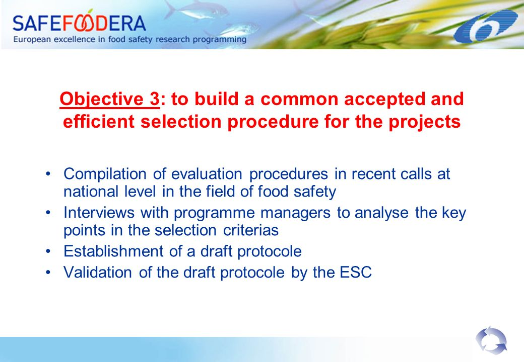 Objective 3: to build a common accepted and efficient selection procedure for the projects Compilation of evaluation procedures in recent calls at national level in the field of food safety Interviews with programme managers to analyse the key points in the selection criterias Establishment of a draft protocole Validation of the draft protocole by the ESC