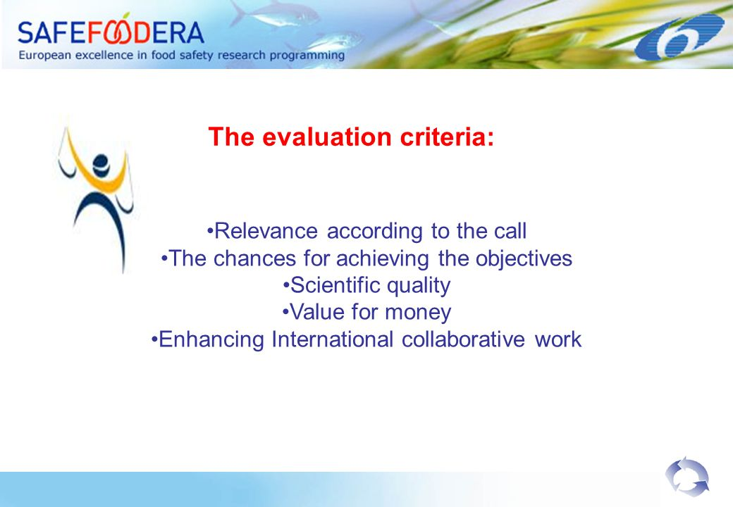 The evaluation criteria: Relevance according to the call The chances for achieving the objectives Scientific quality Value for money Enhancing Interna