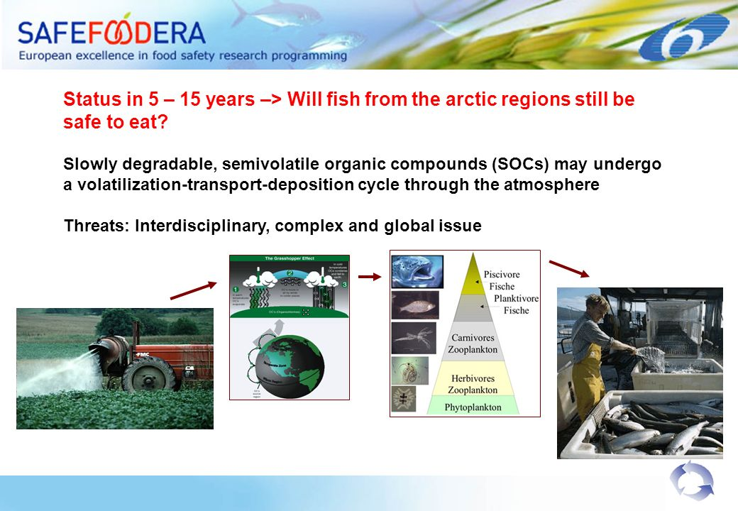 Status in 5 – 15 years –> Will fish from the arctic regions still be safe to eat? Slowly degradable, semivolatile organic compounds (SOCs) may undergo