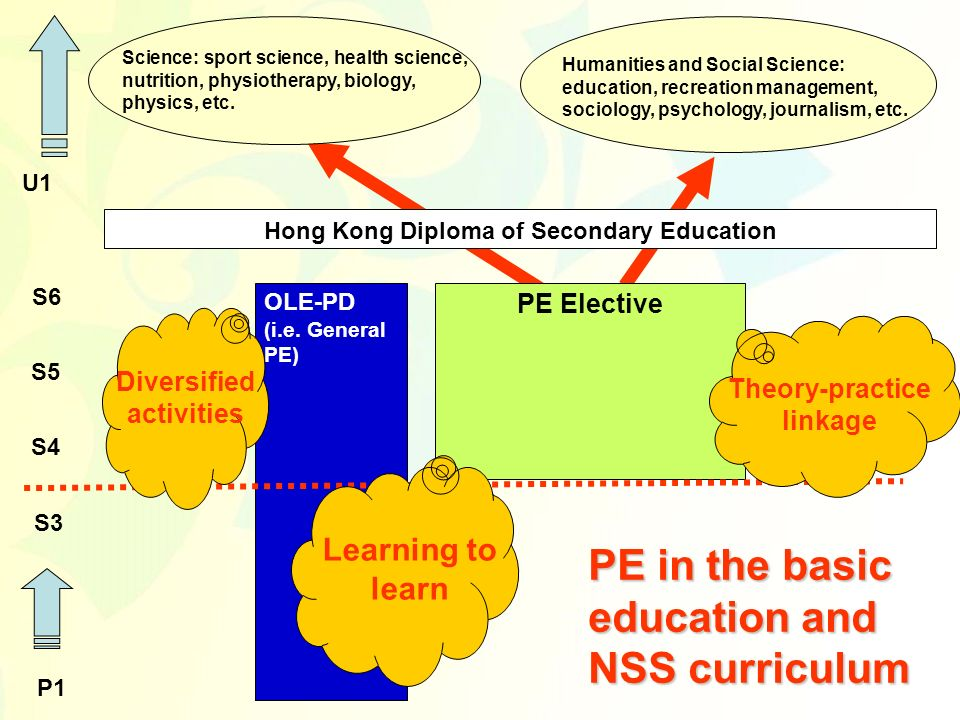 OLE-PD (i.e. General PE) PE Elective S4 S6 S5 P1 S3 Hong Kong Diploma of Secondary Education U1 Humanities and Social Science: education, recreation m