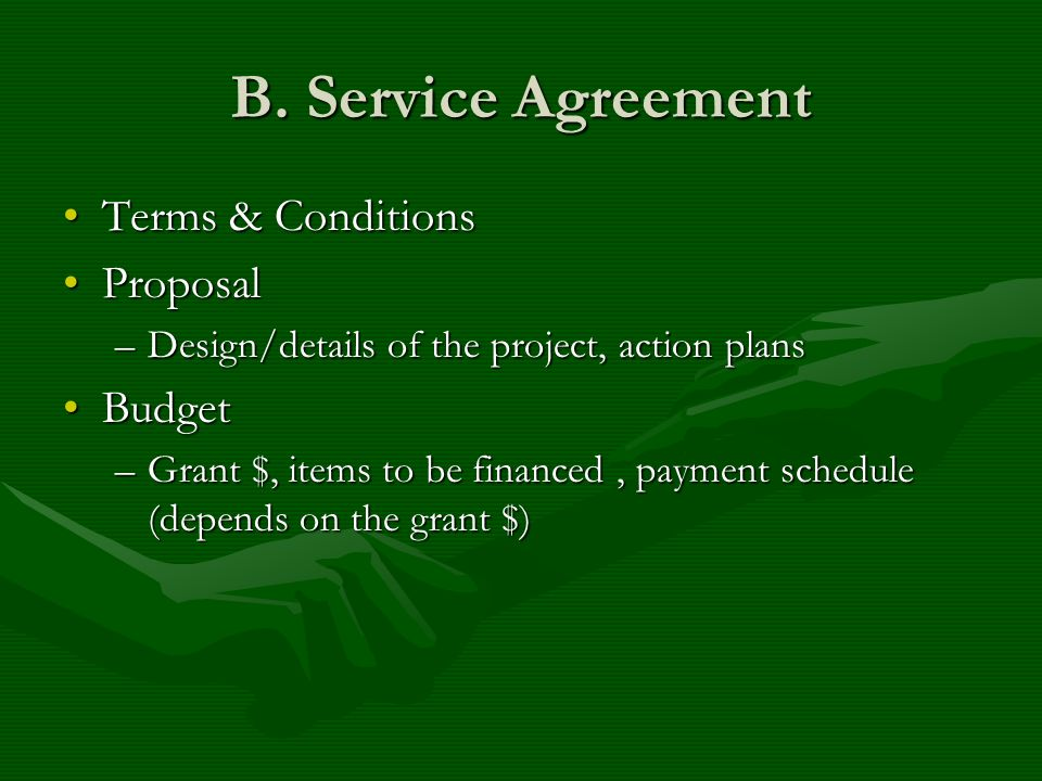 B. Service Agreement Terms & ConditionsTerms & Conditions ProposalProposal –Design/details of the project, action plans BudgetBudget –Grant $, items t