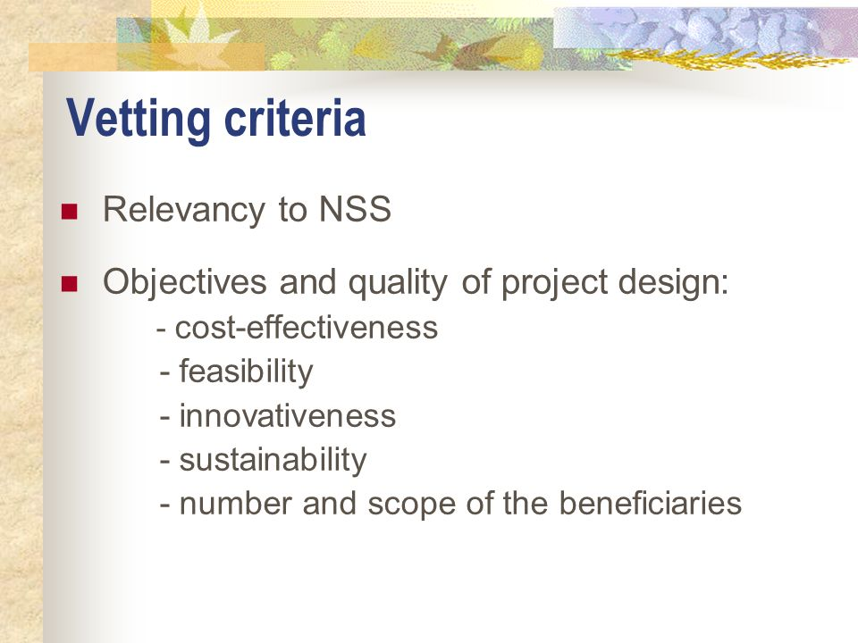Vetting criteria Relevancy to NSS Objectives and quality of project design: - cost-effectiveness - feasibility - innovativeness - sustainability - num