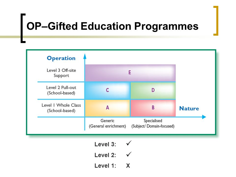 Level 3: Level 2: Level 1: X OP–Gifted Education Programmes