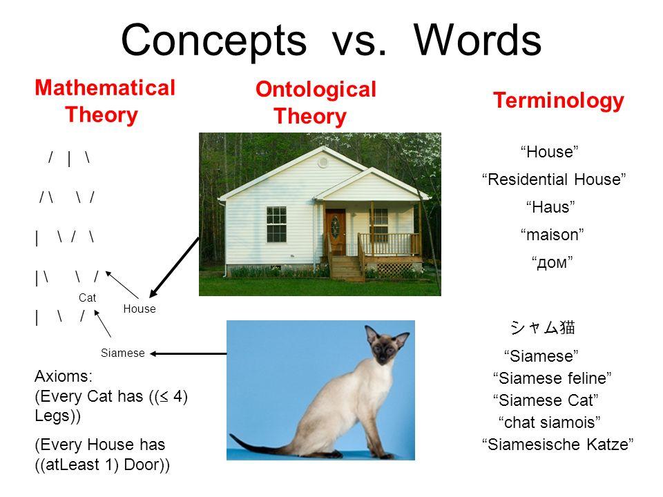 Concepts vs.