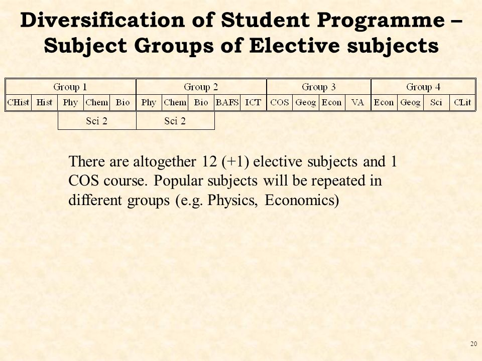 20 Diversification of Student Programme – Subject Groups of Elective subjects There are altogether 12 (+1) elective subjects and 1 COS course.