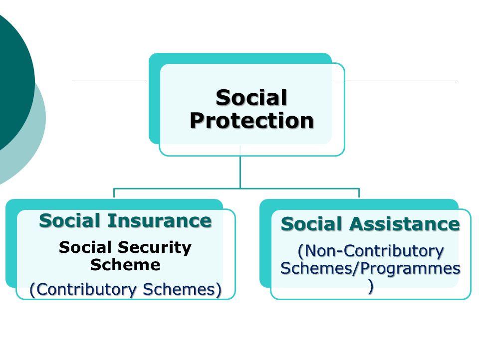 Social Protection Social Insurance Social Security Scheme (Contributory Schemes) Social Assistance (Non-Contributory Schemes/Programmes )