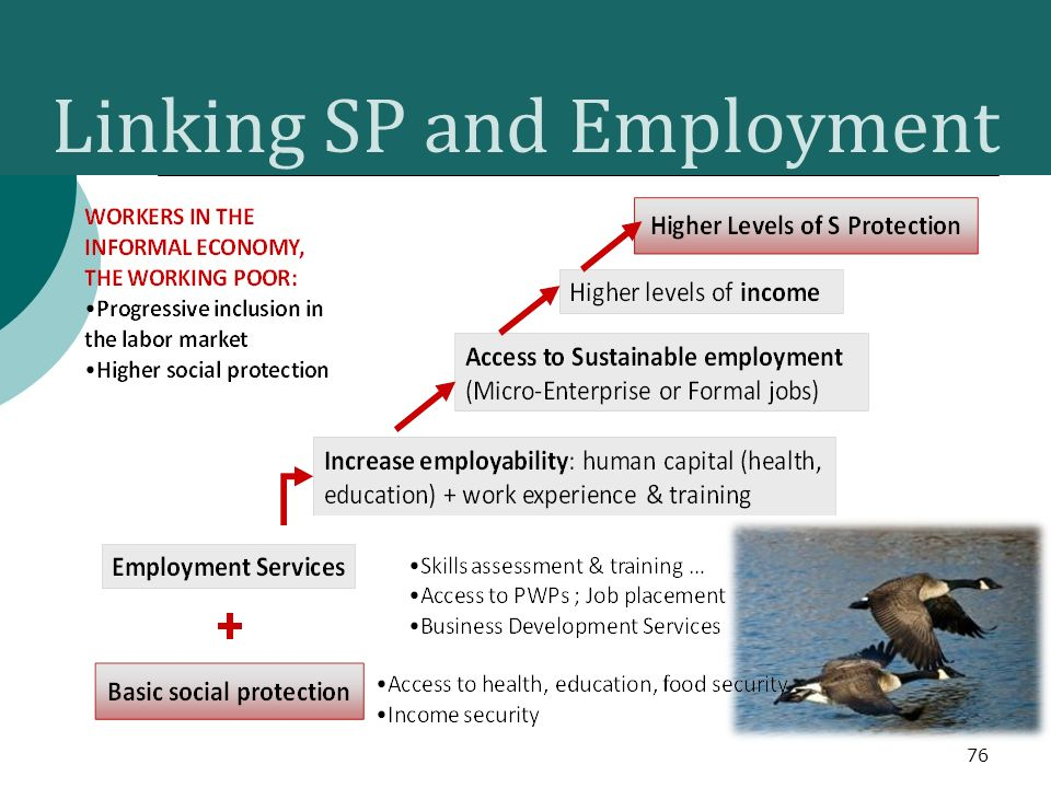 Linking SP and Employment 76